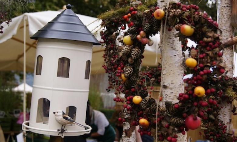 Casetta rifugio per uccellini